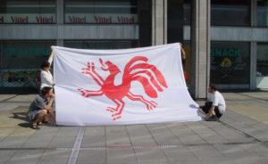 Gemeenschappelijke vlag